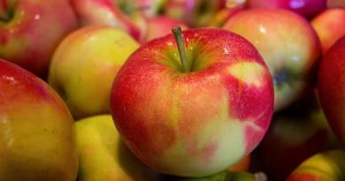 apples-490474_1920